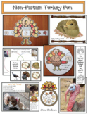 Non-Fiction Turkey Activities With A Life Cycle Craft