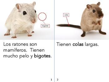 Non-Fiction book in Spanish Level E - Los ratones