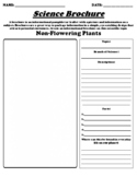 "Non-Flowering Plants ""Informational Brochure"" UDL WebQuest & Worksheet"