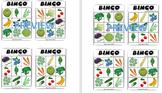 Non GMO Bingo Game