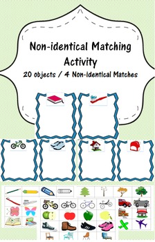 Non-Identical Matching/Sorting pack - Common Objects- Discrimination Training