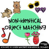 Non-Identical Object Matching Activities