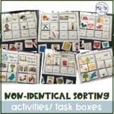 Non-Identical Sorting Activities- Independent Work/File Folder