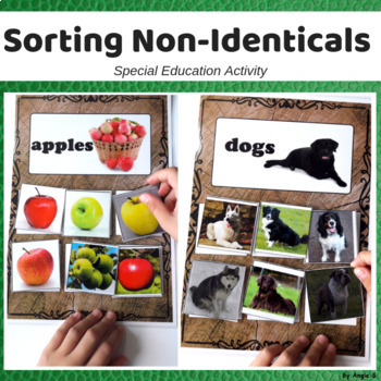 Non Identical Sorting for Special Ed and Autism