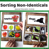 Sorting Non-Identicals Special Education and Autism Resource