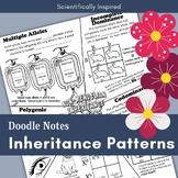 Non-Mendelian Doodle Notes