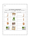 Non-Standard Measurement Worksheet/Record Sheet