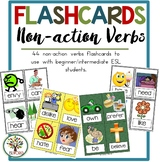 Flashcards Non-action Verbs