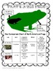 Amphibians-North American Bullfrogs Non-fiction Text -Metric