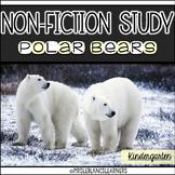 Non-fiction Polar Bear Unit