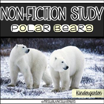 Non Fiction Polar Bear Unit