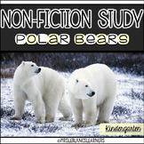 Non-fiction Polar Bear Unit