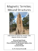 Non-fiction Reading Passage: Magnetic Termite Mound Structures