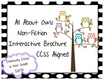 Owl Non-fiction Research Interactive Brochure