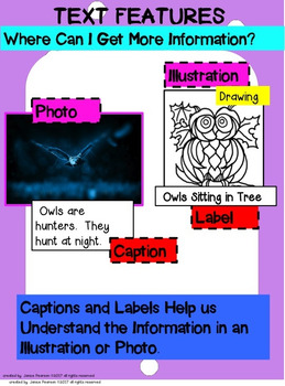 Non-fiction Text Features 2nd and 3rd Grades
