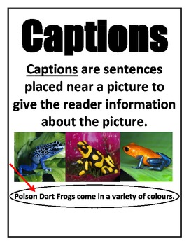 Non-fiction Text Features - Posters