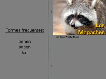 Non-fiction book in Spanish Level D - Los mapaches