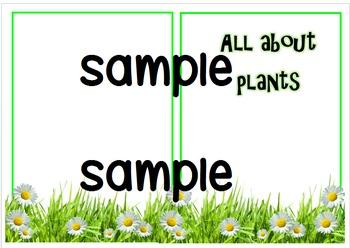 Non fiction plants booklet