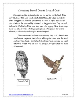 Non-fictional support - Barred Owls