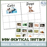 Non-identical/Category Sorting Independent Work Activity with REAL pictures