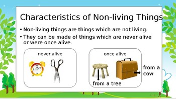 Non Livings Things And Materials By The Teacher Lab Tpt