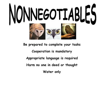 Non-negotiable Rules Poster