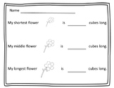 Non - standard Measurement Flower Activity