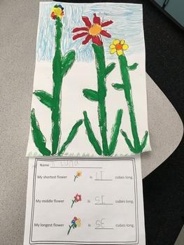Non - standard Measurement Flower Activity
