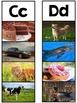 Nonfiction Alphabet Cards