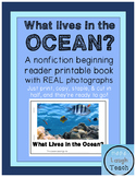 Nonfiction Beginning Reader Printable Book - Ocean