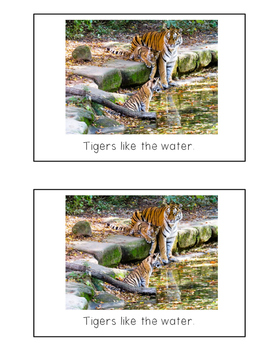 Nonfiction Beginning Reader Printable Book - Tigers