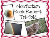 Nonfiction Book Report Pamphlet, Tri-fold, Brochure