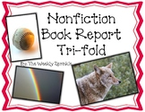Nonfiction Book Report Pamphlet, Trifold, Brochure