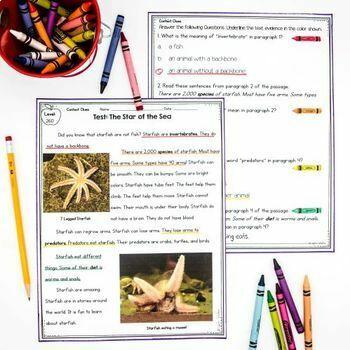 1st Grade Nonfiction Reading Comprehension Bundle
