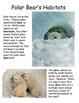 Polar Bears Differentiated Texts Nonfiction Close Reading NO PREP