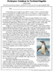 Nonfiction Comparing and Contrast Snowball Fights Bundle - Reading Comprehension