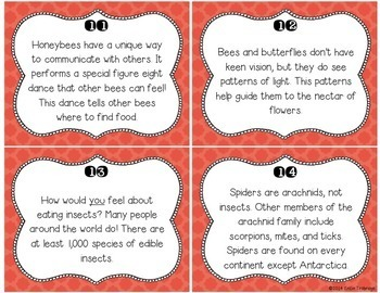 Nonfiction Fluency Practice: Spiders and Insects Fact Cards