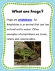 Nonfiction Frog Unit Science Reading Writing Aligned with the Common Core