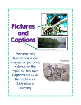 Nonfiction Graphic and Text Features