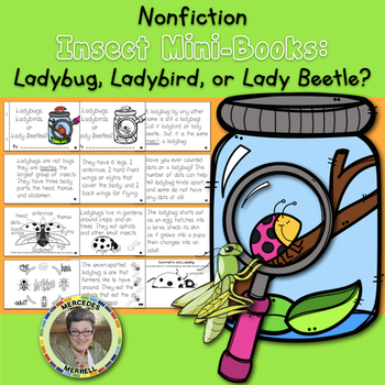 Nonfiction Insect Mini-Book Ladybug, Ladybird, or Lady Beetle?