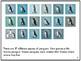 Nonfiction Picture Book: Snares Penguins