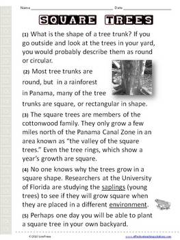 Nonfiction Reading Comprehension Passage - Square Trees
