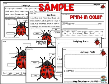 Nonfiction Reading Comprehension, Short Passages, Diagrams, & Writing Responses