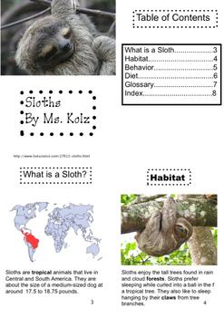 Nonfiction Sloth Book