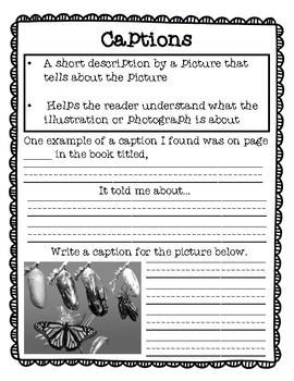 Nonfiction Text Feature Notebook