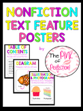 Nonfiction Text Feature Posters---K-3