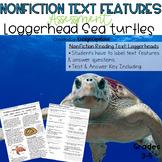 Nonfiction Text Features Assessment: Loggerhead Turtles