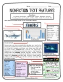 Nonfiction Text Features Assessment {w/ additional assessment}
