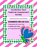 Nonfiction Text Features Assessments Bundle
