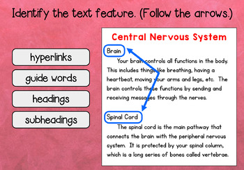 Nonfiction Text Features Digital Task Cards: BOOM Cards